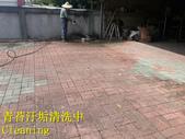 1503 Home Garden-Red Brick Floor Moss Cleaning Pro:1503 Home Garden-Red Brick Floor Moss Cleaning Project - Photo (23).jpg