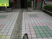 1800 社區-走道-電梯出口-通體磚止滑防滑施工工程 - 相片:1800 社區-走道-電梯出口-通體磚止滑防滑施工工程 - 相片 (35).JPG