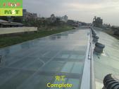 1204 溫室-屋頂-強化玻璃採光罩-清除水垢工程 - 相片:1204 溫室-屋頂-強化玻璃採光罩-清除水垢工程 (36).JPG