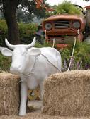 2011飛牛牧場:飛不起來的牛