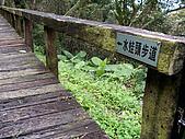 南投山水原鄉情:水蛙頭步道