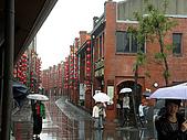宜花揭幕-5:雨中即景