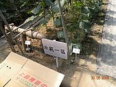小黃瓜合理化施肥田間成果觀摩會:20090630觀摩會 020.jpg