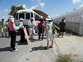 小黃瓜合理化施肥田間成果觀摩會:20090630觀摩會 010.jpg