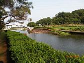 桃園大溪慈湖:DSCN0336[1]