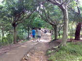 桃園虎頭山公園:虎頭山公園20120624793.jpg