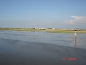 高美濕地:1182115150.jpg