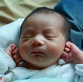 可愛的侄子 @ 來億:baby 2.jpg