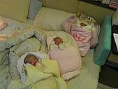 可愛的三胞胎:IMG_1217.JPG