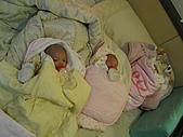 可愛的三胞胎:IMG_1220.JPG