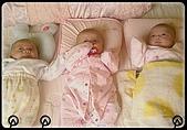 可愛的三胞胎:表頭1.jpg