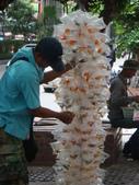 泰國亂亂走~遊玩篇:1778022481.jpg