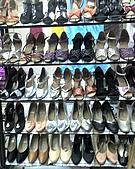 立迪雅舞蹈用品 :02 女拉丁鞋+摩登鞋櫥窗系列.jpg