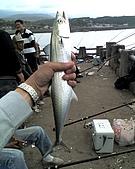 碧海藍天~釣魚樂:01-03-06_0013.jpg