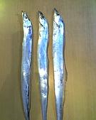 碧海藍天~釣魚樂:01-03-06_1119.jpg