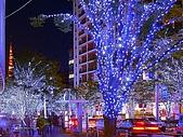 聖誕節 ~ Merry Christmas( 聖誕節晚會) :聖誕節街燈.jpg