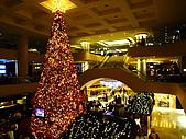 聖誕節 ~ Merry Christmas( 聖誕節晚會) :金輝煌聖誕樹02.jpg