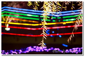 鹽水旅遊景點:2012月津港燈會-16