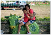 彰雲嘉旅遊:嘉義新港板頭村-07