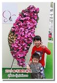 台南市旅遊:2011台灣國際蘭花展-10