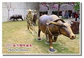 台南市旅遊:2011台灣國際蘭花展-18