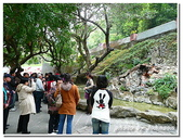 台南縣旅遊:關仔嶺水火同源-07