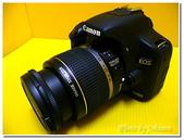 未分類相簿:CANON EOS 500D單眼相機-20