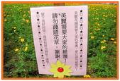 高雄縣旅遊:三隆賞花區- 03