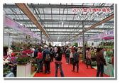 台南市旅遊:2011台灣國際蘭花展-06