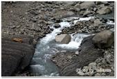 彰雲嘉旅遊:達娜伊谷自然生態公園-08