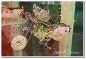 彰雲嘉旅遊:台灣玻璃館-03