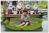 台南縣旅遊:2011白河蓮花季-08