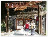 高雄旅遊:壽山動物園-11