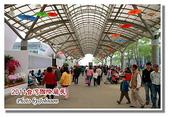 台南市旅遊:2011台灣國際蘭花展-12