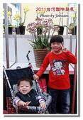台南市旅遊:2011台灣國際蘭花展-30