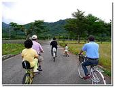 台東旅遊:台東鹿野龍田自行車道-17