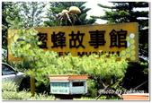 彰雲嘉旅遊:古坑綠色隧道景觀公園-33
