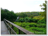小港旅遊:小港-高雄市熱帶植物園-20