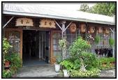 台東旅遊:台東太麻里金針花- 03