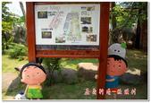 彰雲嘉旅遊:嘉義新港板頭村-08
