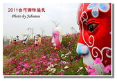 台南市旅遊:2011台灣國際蘭花展-15