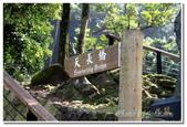 彰雲嘉旅遊:天長地久橋-06