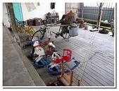 台南縣旅遊:柳營乳牛的家-16