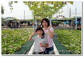 台南縣旅遊:2011白河蓮花季-02