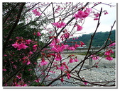 桃園新竹苗栗旅遊:新竹橫山- 內灣吊橋 • 內灣車站-11