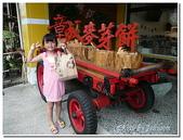 台南縣旅遊:章成食品門市-05