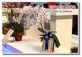 台南市旅遊:2011台灣國際蘭花展-27