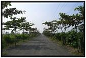 屏東旅遊:獅頭石頭公園- 14