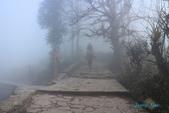 20180125雲東南秘境之旅4~~阿者科、元陽梯田:8村民在霧中來去.JPG
