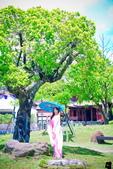 2015-08 林安泰古厝 婚紗:DSC_8566.jpg